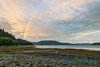 Rainbow over Stikine River Delta, from Mitkof Island
