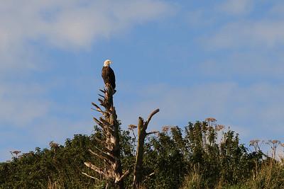 2011_09_23 Alaska 036