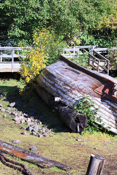2011_09_23 Alaska 052