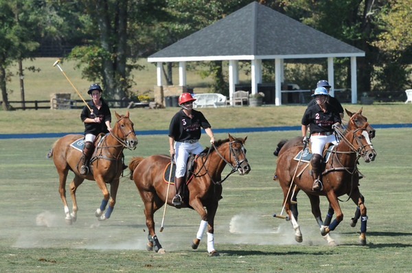 Polo match near Aldie