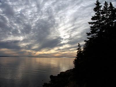 Acadia Evening