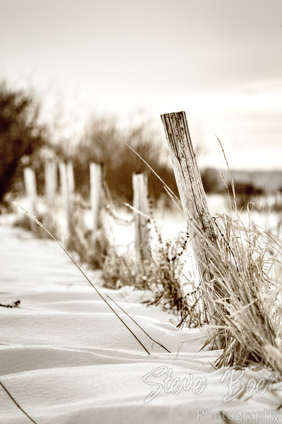 Old fence in winter