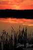 Sunset with grass by the Sturgeon River