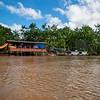 Floresta Inundada: Guama River