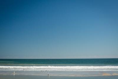 20140314_Amelia Island_007