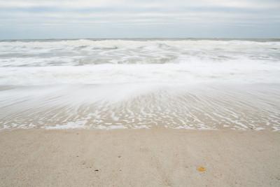 20121118_Fernandina_9636