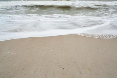 20121118_Fernandina_9616