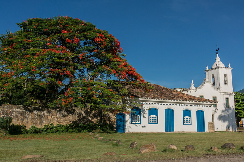 Colonial church and flame tree