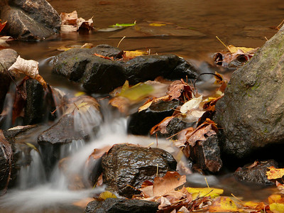 Amicalola Falls - Nov. 13, 2007