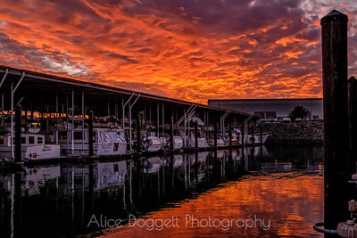 Killer Sunset, Anacortes, WA
