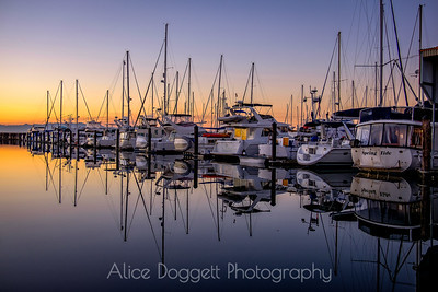 Reflections At Dawn, Anacortes Marina