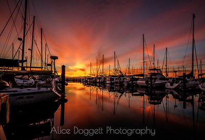 Red Sky In The  Morning,  Anacortes, WA