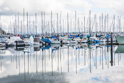 Reflections - Cap Sante Marina, Anacortes