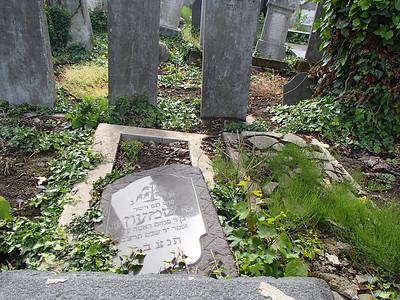 Szatmar Cemetery, May 16