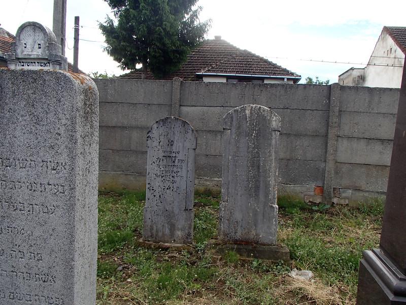 P5150021Holocaust Memorial Szatmar