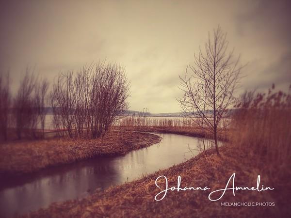 Aneriojärven luonnonsuojelualue