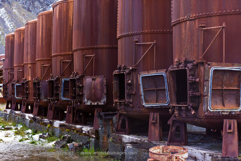 Grytviken Whale blubber boilers<br /> Each cooker could process 24 tonnes of blubber in 5 hours; there were several rows of them.