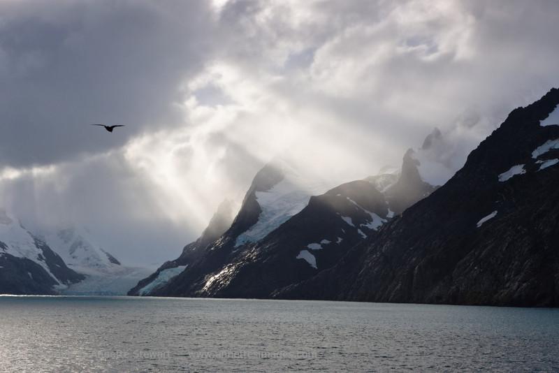 Stormy light, Drygalski fjord