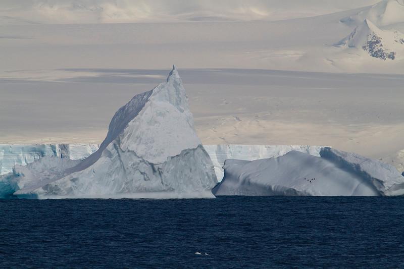 El diminuto punto que suponen los pingüinos sobre un témpano ayuda a poner la escala a esta costa de hielos perpetuos.
