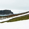 Aitcho Island in South Shetland. A little more north in latitude makes a big difference in landscape and penguin activities.