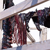 Drying seal meat