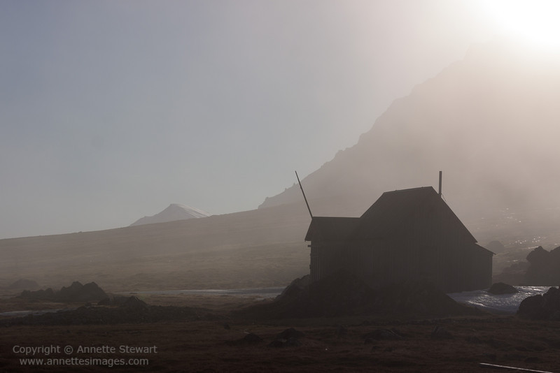 Midnight mist