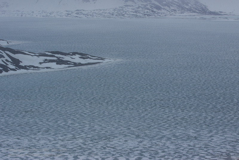New sea ice forming, St Jonsfjord