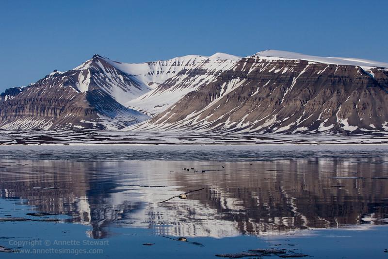 Reflections, Ekmanfjord
