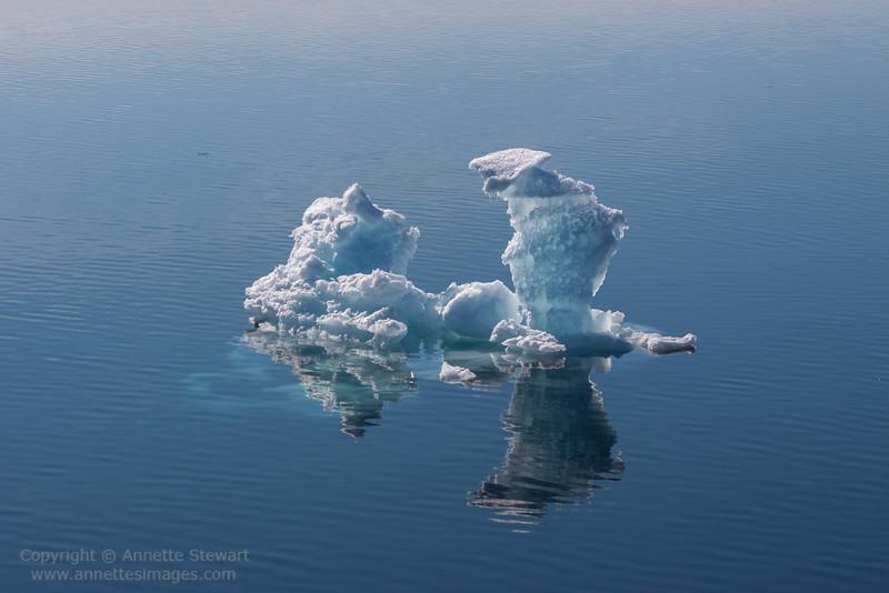 Sea ice, Storfjorden