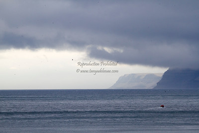 Read about Prince Leopold Island here: http://tanyadeleeuwphotography.blogspot.ca/2012/08/prince-leopold-island.html