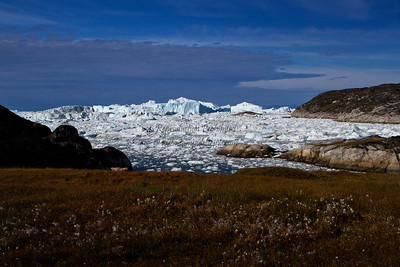 More about ice berg central here: http://tanyadeleeuwphotography.blogspot.ca/2012/12/ice-berg-central.html