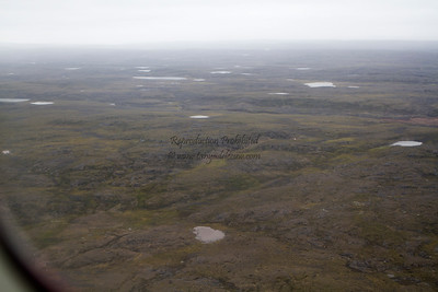 Read more about it on my blog: http://tanyadeleeuwphotography.blogspot.ca/2012/08/wings-over-nunavut.html
