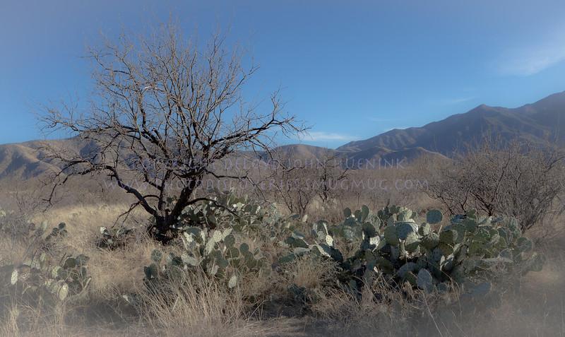 Box Canyon Road-1353