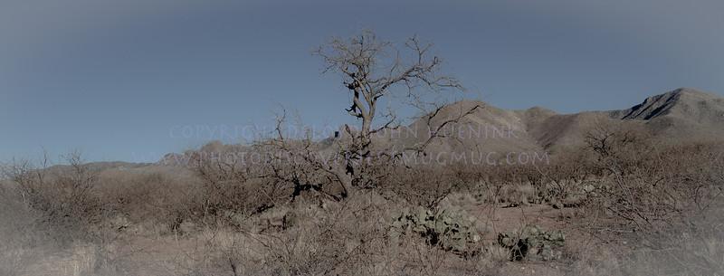 Box Canyon Road-1368