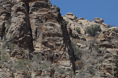 Sabino Canyon
