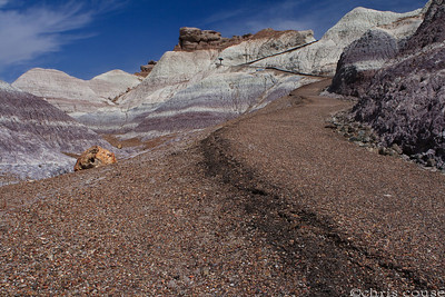 Petrified Forest National Park - March 2011