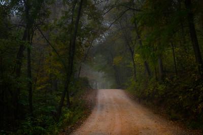 Whitaker Point Trail-1826-2