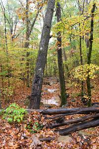 Whitaker Point Trail-1836