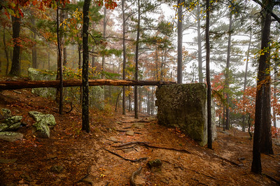 Whitaker Point Trail-1891-HDR