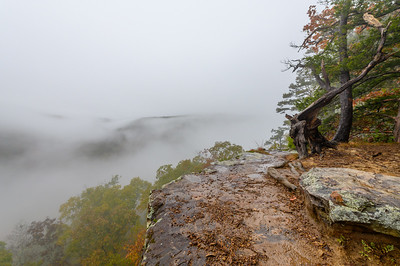 Whitaker Point Trail-1900-HDR