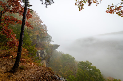 Whitaker Point Trail-1915-HDR