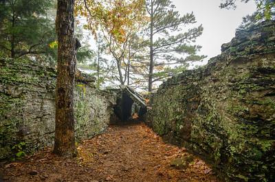 Whitaker Point Trail-1885