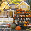Whitefish Bay Pumpkins