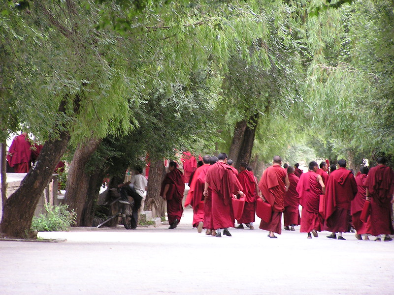 50 Sera Monks after debates
