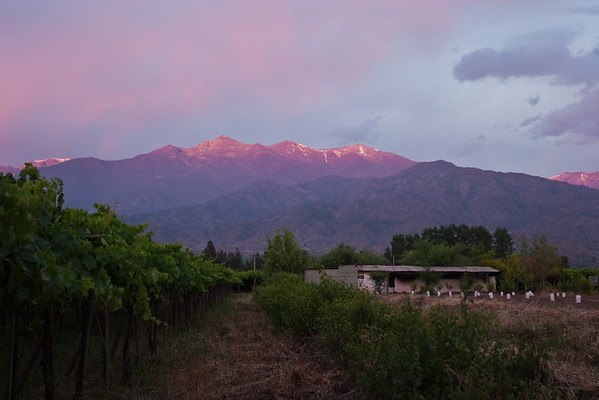 """Sunset on the Andes looking east from Casa San Regis outside San Estaban in the Aconcagua Valley. Thompson seedless grapes on the left - soon be be in a US grocery store. See: <a href=""""http://www.casasanregis.cl/2008/"""">http://www.casasanregis.cl/2008/</a>"""