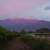 "Sunset on the Andes looking east from Casa San Regis outside San Estaban in the Aconcagua Valley. Thompson seedless grapes on the left - soon be be in a US grocery store. See: <a href=""http://www.casasanregis.cl/2008/"">http://www.casasanregis.cl/2008/</a>"