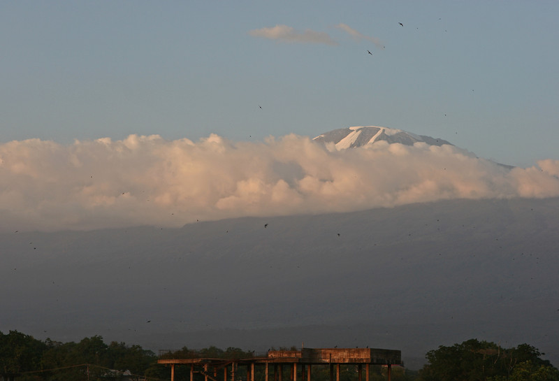 "Mt Kilimanjaro at sunset from the rooftop of Hotel Kindoroko in Moshi.  <a href=""http://www.kindorokohotels.com/"">http://www.kindorokohotels.com/</a>"