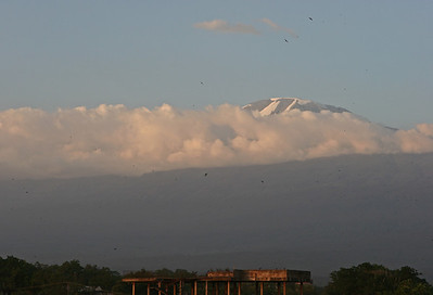 Mt Kilimanjaro at sunset from the rooftop of Hotel Kindoroko in Moshi.  http://www.kindorokohotels.com/