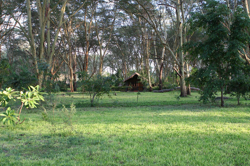 Migunga Forest Camp just east of  Lake Manyara National Park.