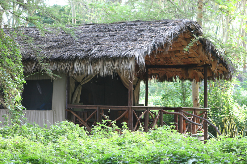 Individual chalet at Migunga Forest Camp just east of  Lake Manyara National Park.
